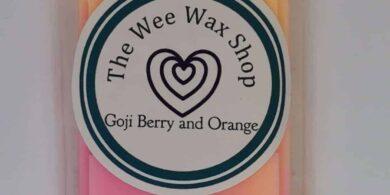 Snap Bar Goji Berry and Orange Wax Melt