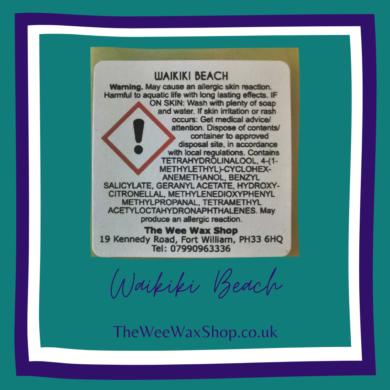 W Beach snap back